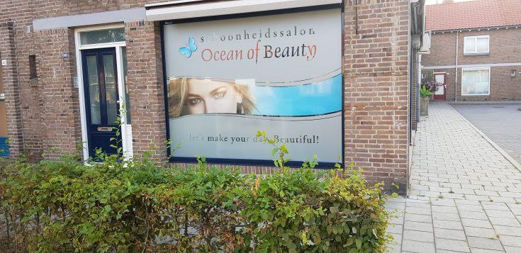 Ocean of Beauty