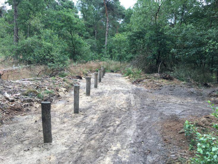 Het Beweegbos